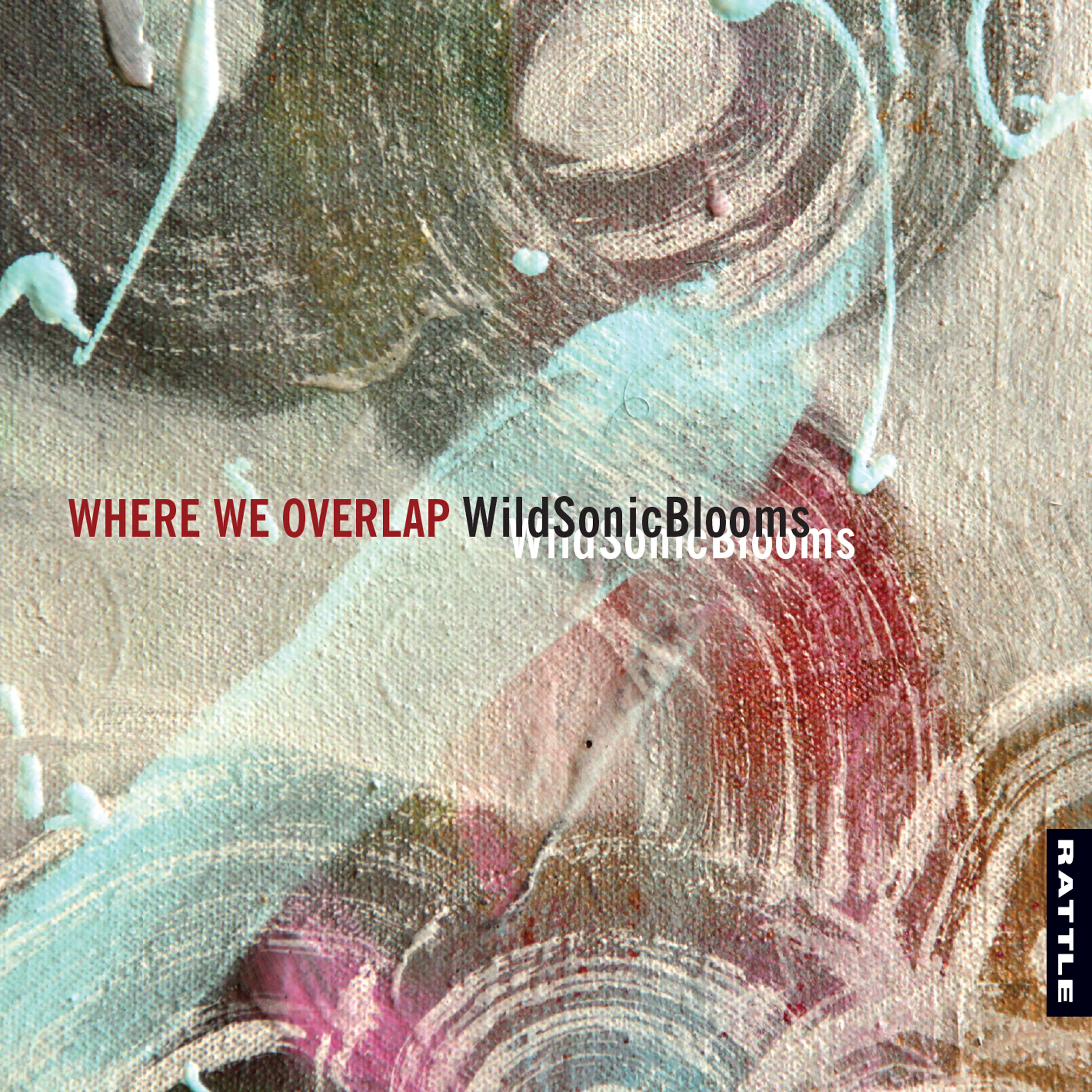 WildSonicBlooms | Where We Overlap - CD