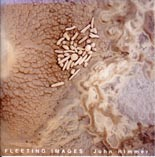 John Rimmer: Fleeting Images